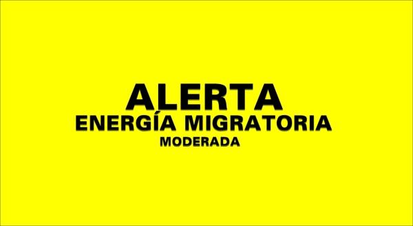 SISMO ENERGIA MIGRATORIA